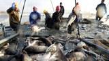 china-fishing-12292017.jpg
