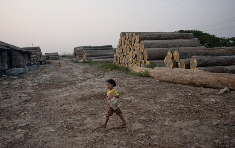 A girl carrying a basket at a logging area on the outskirts of Yangon, Myanmar, where .logging  exploded in the early 2000s, when the military junta discarded sustainable forestry practices ito cash in on vast natural resources, in a 2014 file photo. Credit: AFP