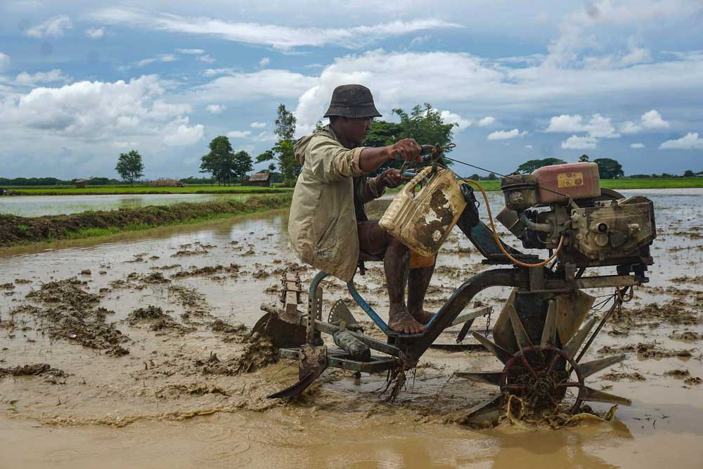 In the past, only cattle were used for plowing, but many have been replaced with small tractors. Myo Min Soe/RFA