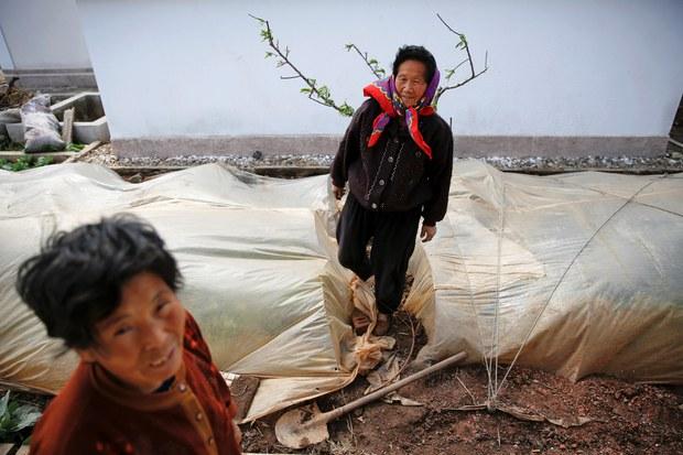 Facing Chronic Shortfalls, North Korea Tells Citizens to Start Supplying Their Own Food